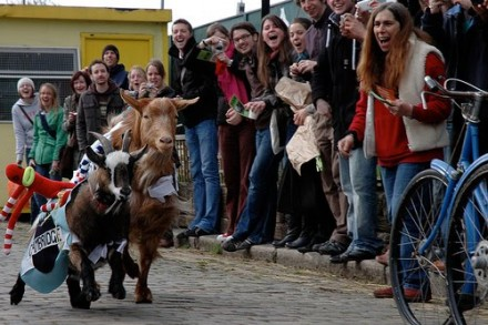 The Goat Race at Spitalfields City Farm (Babes Review)