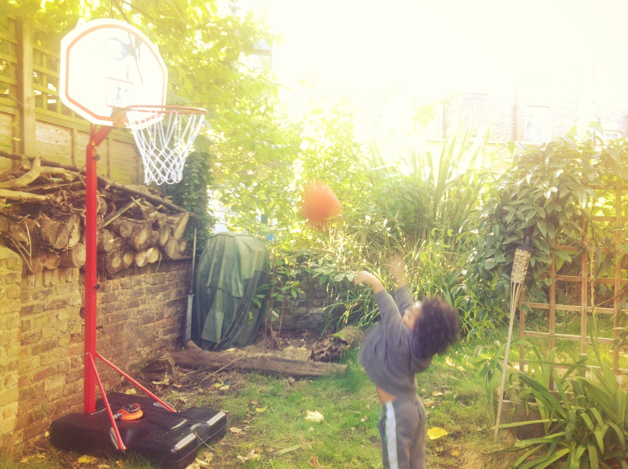 Bee-Ball Junior Basketball Stand