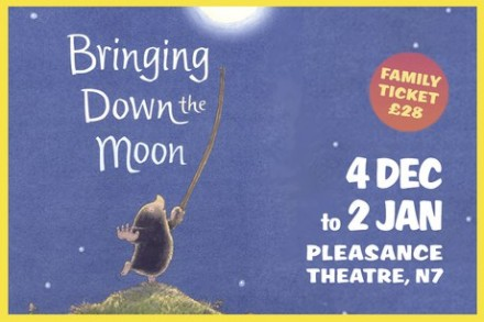 Bringing down the Moon (Babes Review)