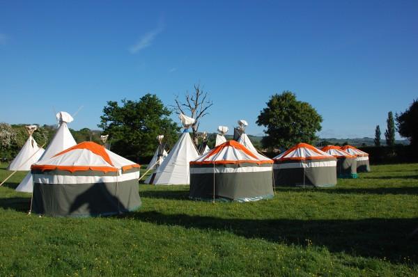Tangerine Fields tents
