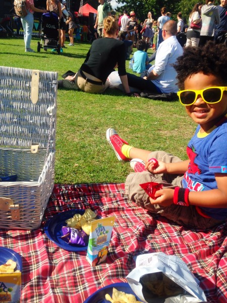 Picnic at Disco Loco in the Park