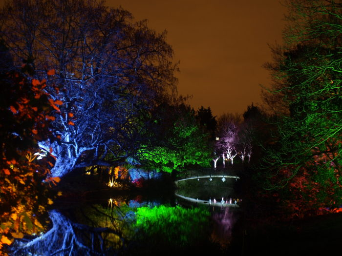 Enchanted Woodland Syon Park