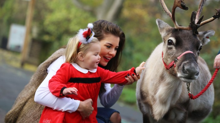 Santa and Reindeer London Zoo