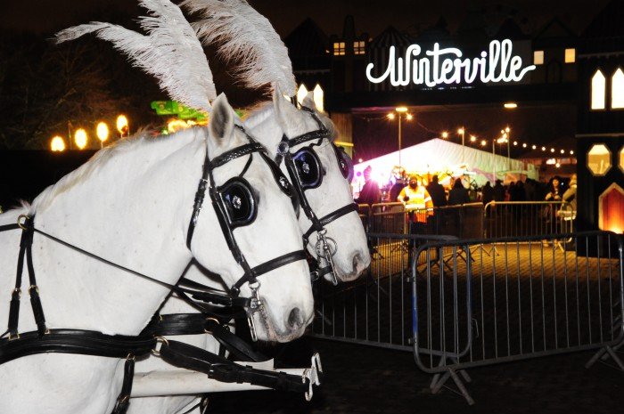 Winterville by PG Brunelli