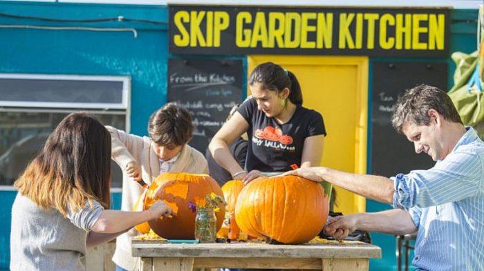 Skip Garden Pumpkins