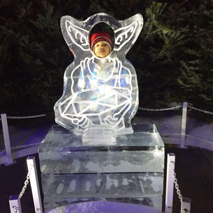 Ezra in Ice