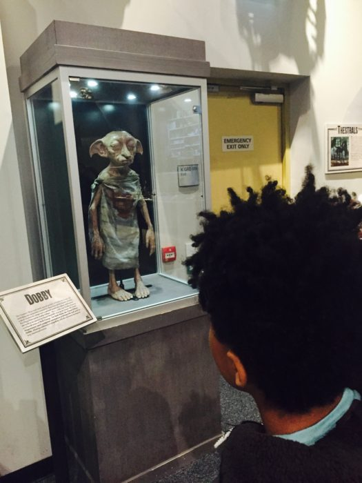 Harry Potter tour Dobby