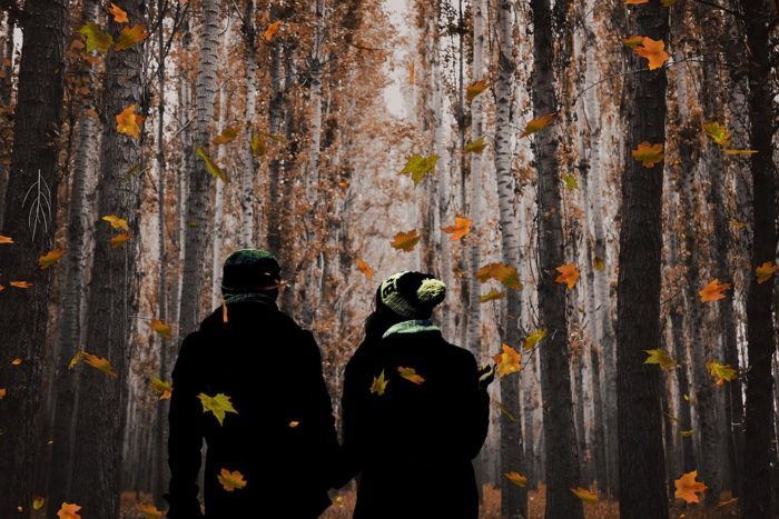 9 Wonderful Reasons You should Go Walking in Autumn and Winter