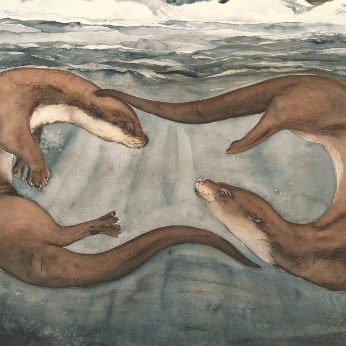 Jackie Morris Otter