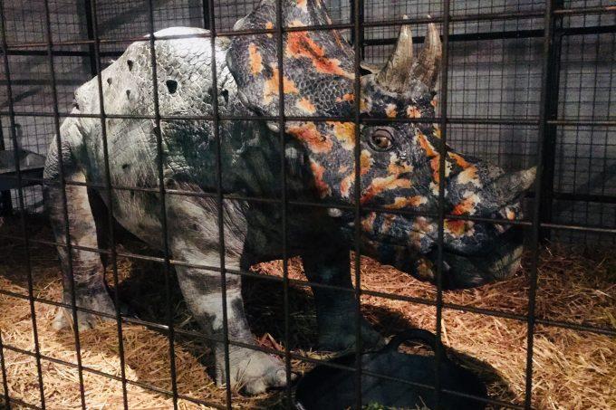 Dinosaurs in the Wild jurassic safari