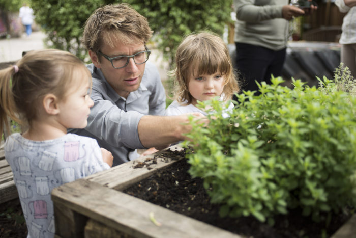 Ben Faulks in garden at Aberdeen Park Nursery