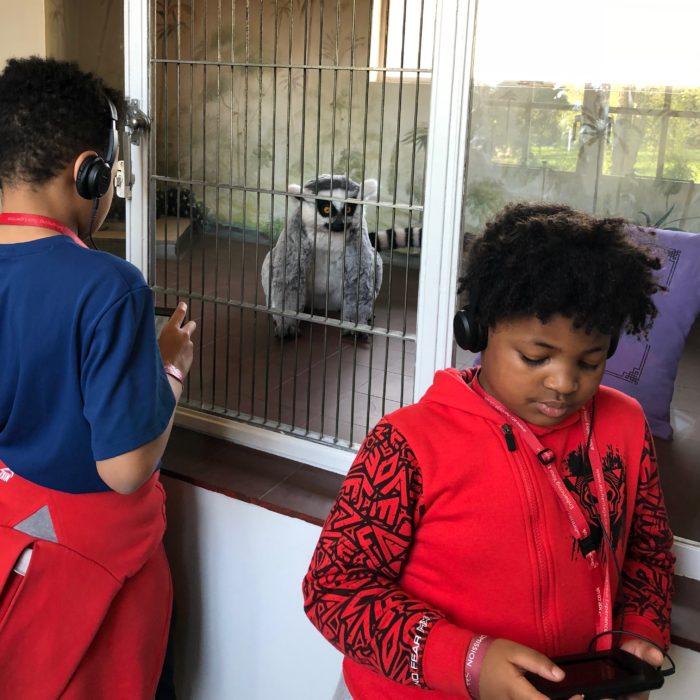 Eltham Palace Mah Jongg the lemur