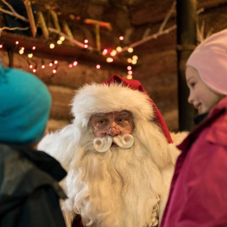 Father Christmas at WWT London Wetland Centre