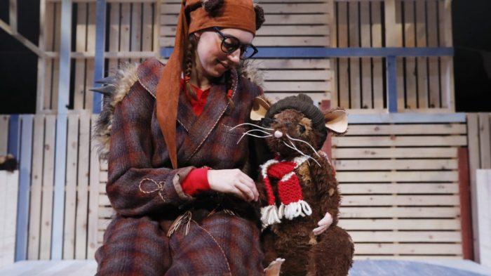 Humbug the hedgehog at Albany