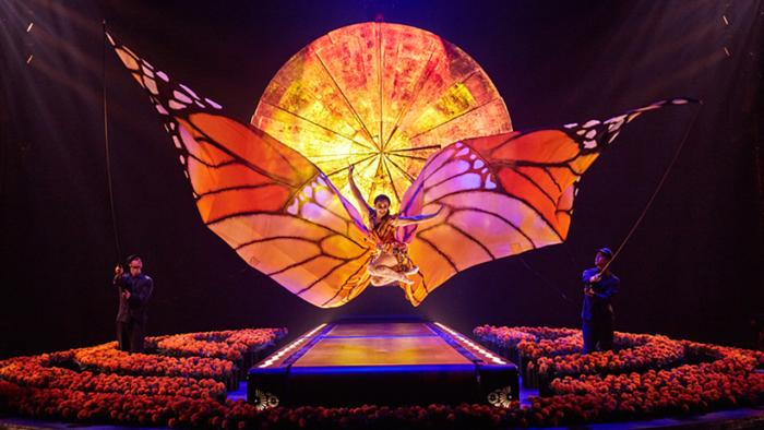 Cirque du Soleil Luzia butterfly