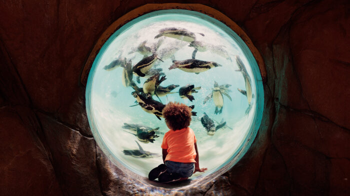 Travel the world at ZSL London Zoo